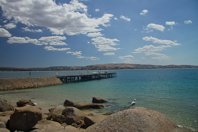 seagull beach Victor Harbour pier jetty landscape image
