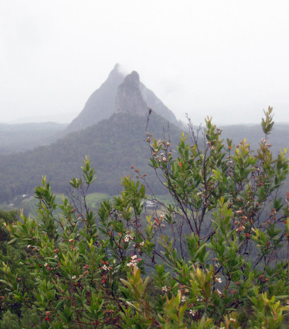 The view from the summit of Mt Ngungun