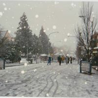 Snow, Katoomba, Blue Mountains