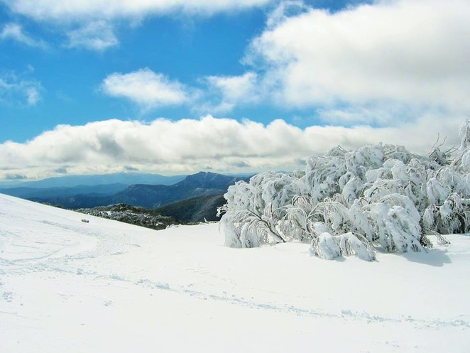 snowfields vic,snow fields victoria,where to go for snow in melbourne,victorian snowfields,victorian snow season,where to go to see snow in australia,where to go to see snow in victoria,skiing in Victoria,skiing holidays,snow holidays,mt stirling