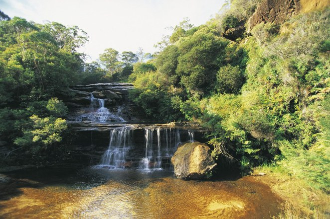 Sydney's Best Bushwalks, Valley of the Waters National Pass Trail