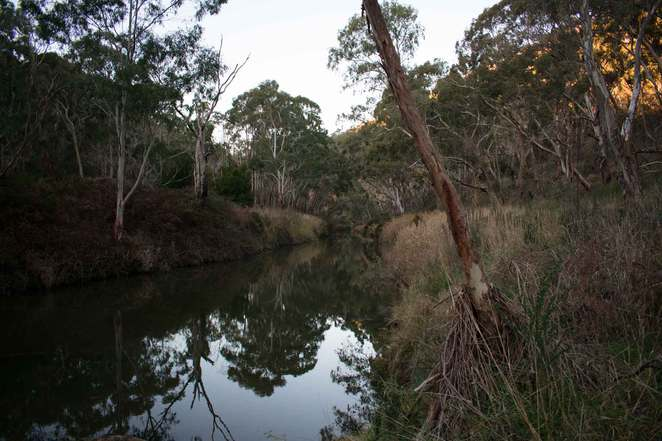 torrens, cudlee creek