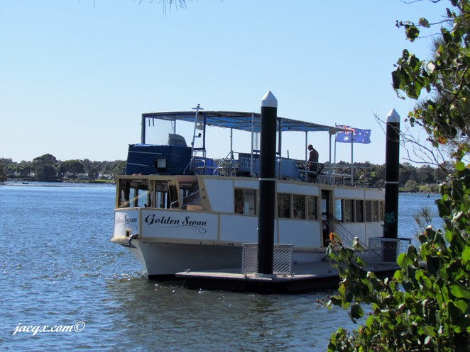 Tweed Endeavour Cruises, seafood lunch, bbq lunch, morning tea, Tweed River tour, Tumbulgum, Golden Swan, rainforest cruise