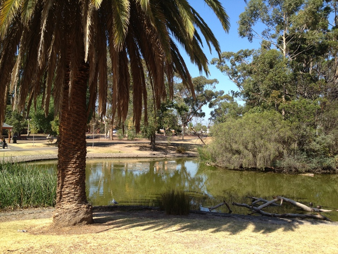 Park, playground, nature reserve, party venue, feed ducks, BBQ, bike riding, walking track,