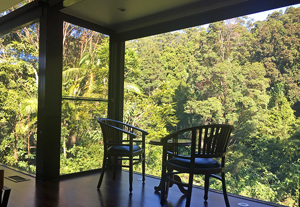 accomodation with mountain view, best brisbane romantic getaway, rainforest lodge, crystal creek rainforest retreat, romantic cottage brisbane