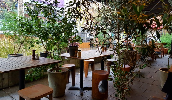 Cafe, outdoors, Sydney, garden, relaxed