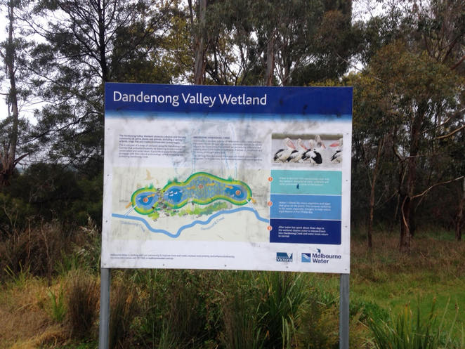 Dandenong Valley Wetland