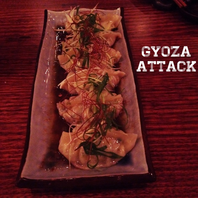 gyoza, dumplings, japanese, tasty, food, restaurant, bar, asian