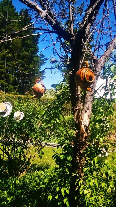 High Tea at the Scented Rose Garden and Teahouse