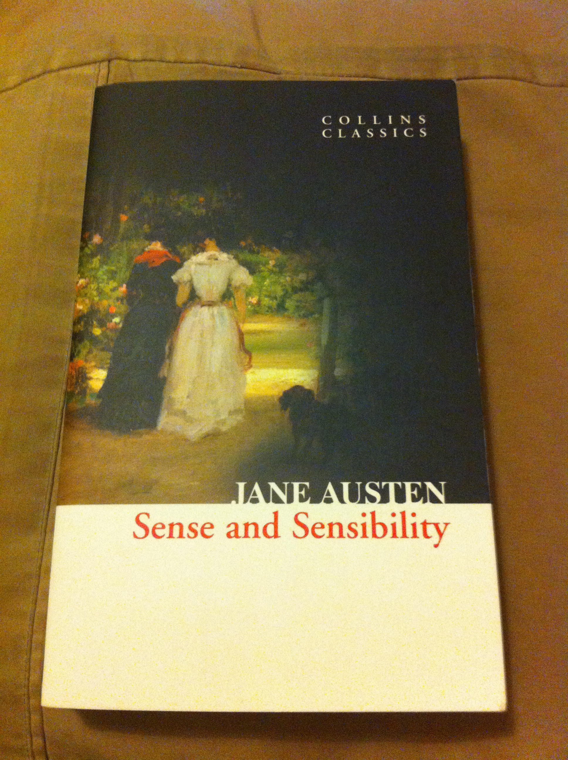 jane austen and sense over sensibility english literature essay Starting an essay on jane austen's sense and sensibility organize your thoughts and more at our handy-dandy shmoop writing lab  literature / sense and .