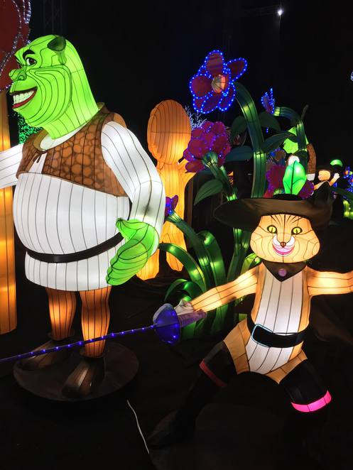 Lights By DreamWorks – The Experience, Crown Pyramid, Animation Exhibit Perth, Exhibitions Perth, Exhibitions for Kids, DreamWorks characters, Shrek, KungFu Panda