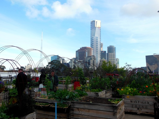 little veggie patch in federation square
