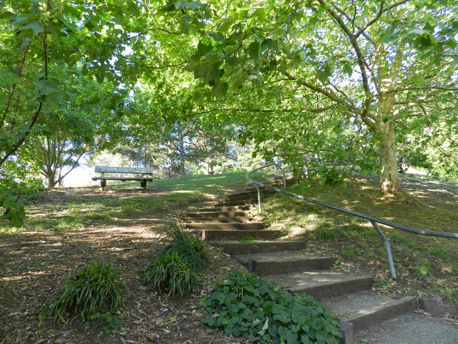 lookout tower, wilson botanic park, playgrounds in casey, playgrounds in melbourne, picnic grounds in berwick, parks in berwick,