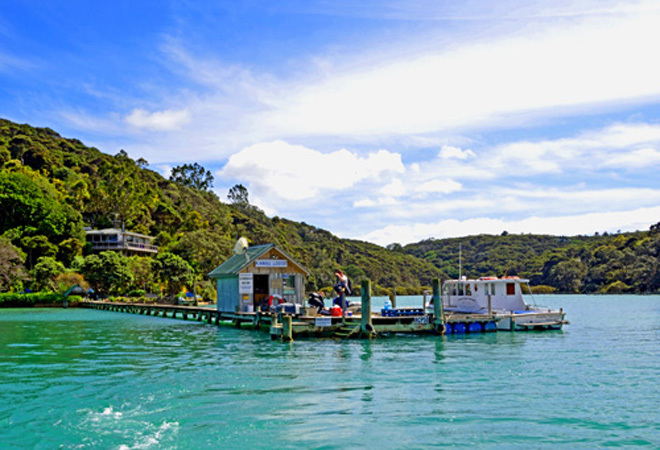 New Zealand Kawau Island Auckland Hauraki Gulf North Maori Tribe Tribes Iwi History Mansion House Escape The City Get Out Of Town