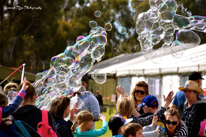 South Australian Country Shows, Country Shows, Gawler Show, Clare Show, Mt Barker Show, Murray Bridge Show, Mt Barker Show, Yankalilla Show, Things to do in South Australia
