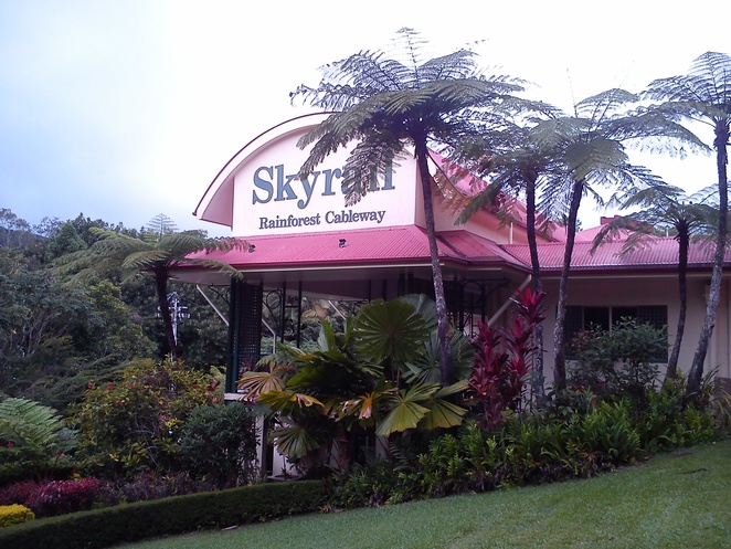 skyrail rainforest cableway, kuranda terminal, rainforest gondolas, things to do in cairns, how to get to kuranda