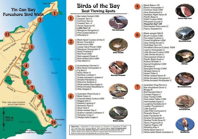 Tin Can Bay Foreshore Bird Walk's species list and map provided by Birding Cooloola