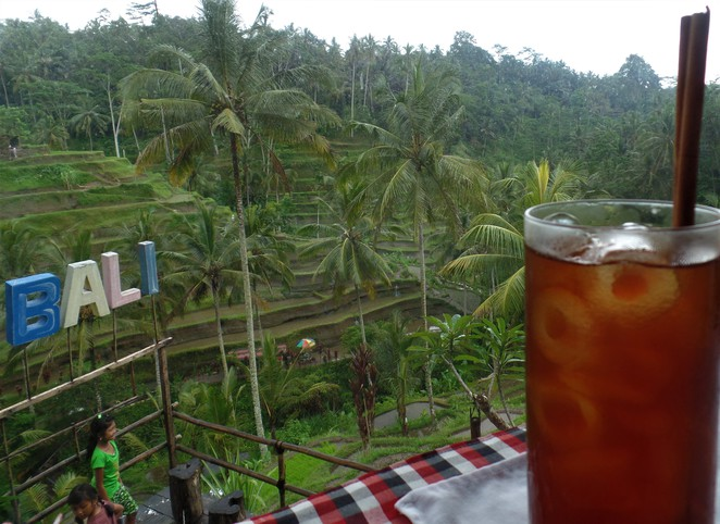 view from teras padi cafe in Tegallalang Bali