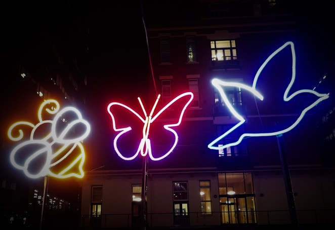 bee, bird and butterfly neon at qv melbourne