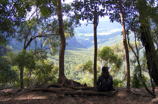 The view from Bellbird Lookout down the Kurraragin Valley