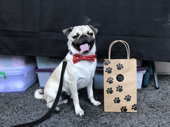 big and little dogs, dog friendly, dog treats, homemade dog accessories, dog collars, dog leashes, handmade, craft, artisan, small business, brisbane, markets, carseldine markets, milton markets, shopping