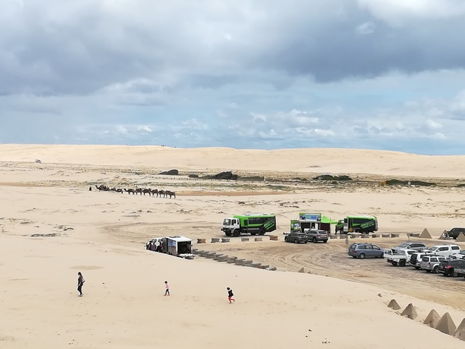 birubi beach, anna bay, NSW, port stephens, camel rides, sand boarding, 4WD, quad biking, anna bay, nelson bay, beaches, learn to surf, stockton sand dunes, sand dunes, biggest moving sand dunes in the southern hemisphere, horse riding, shipwrecks, NSW,