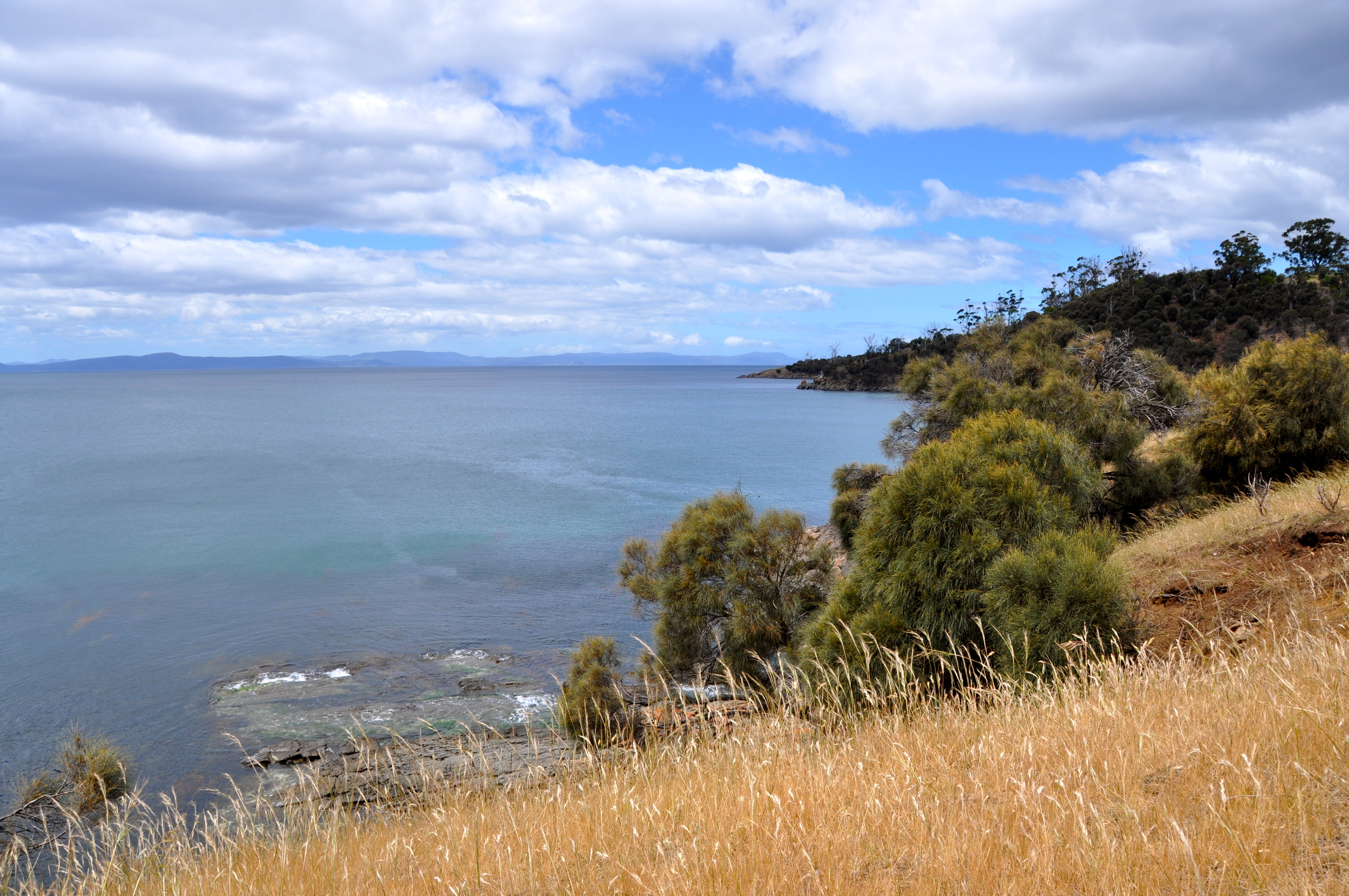 how to go to bruny island from hobart