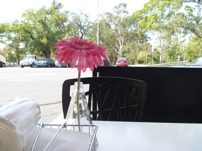 Flower on table at Munooshi Cafe, east terrace adelaide