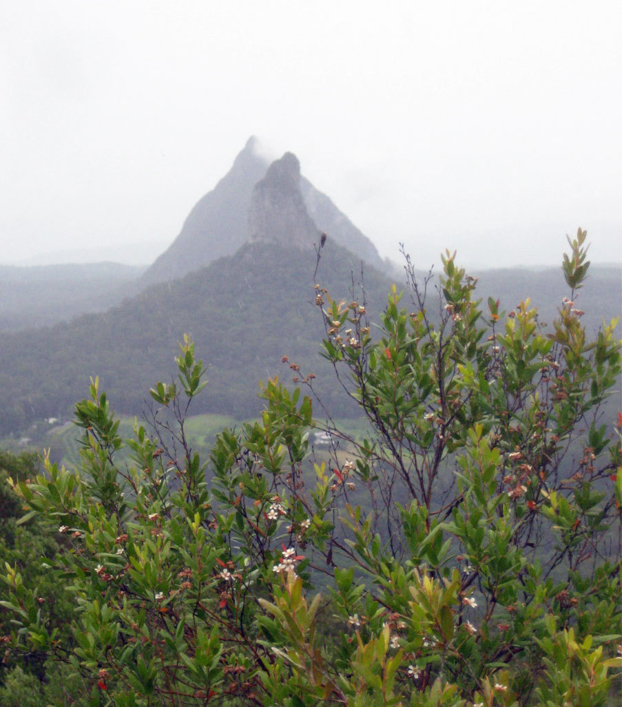 Glass House Mountains Guide - Brisbane