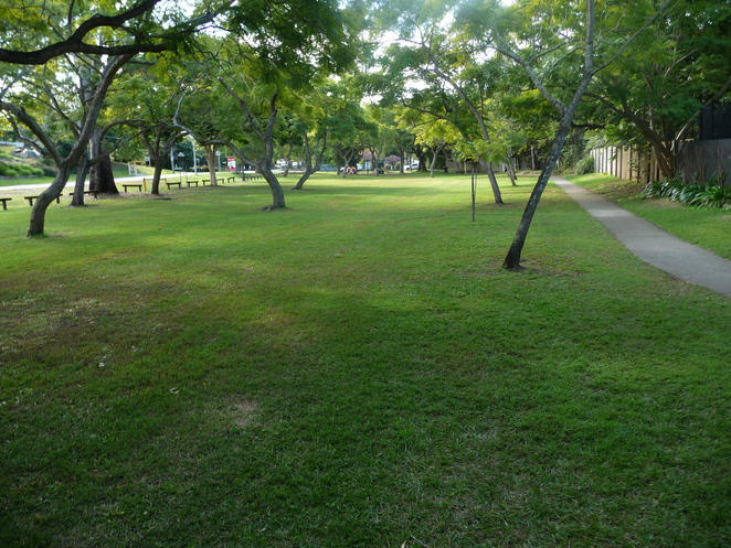 Lex Ord park, indooroopilly road, st lucia