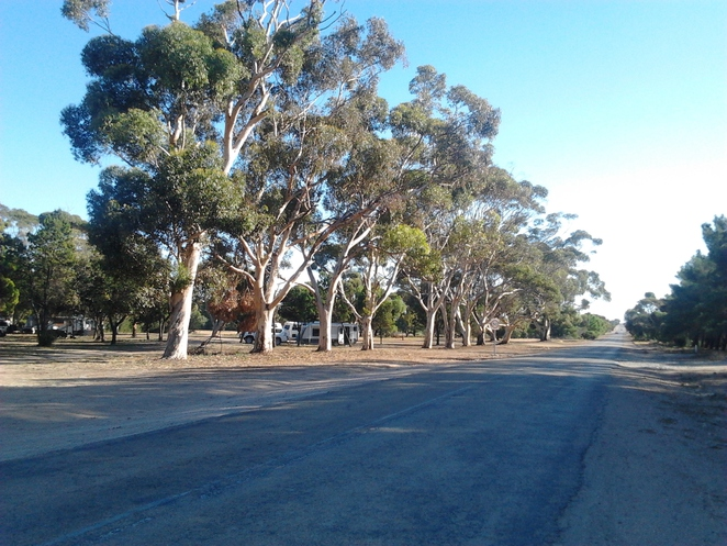 Moonta RV park, overnight stay, tourism, travel, motoring, grey nomads, free parking, RV stops, trees, South Australia