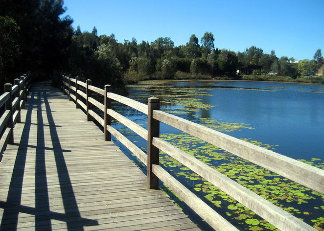 One of the many lakes at the North Lakes Environmental Park