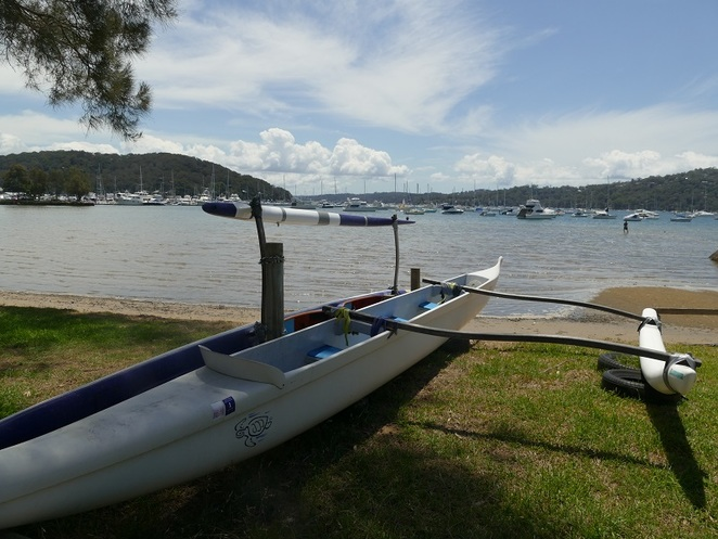 Pittwater Dragon Boat Racing, Bayview Pittwater Northern Beaches Sydney NSW