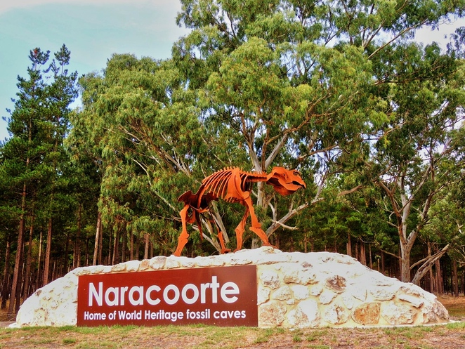 south australian regions, limestone coast, from adelaide to mount gambier, limestone coast wineries, dukes highway, naracoorte caves, beachport jetty, things to do in robe, coorong national park, naracoorte dinosaurs