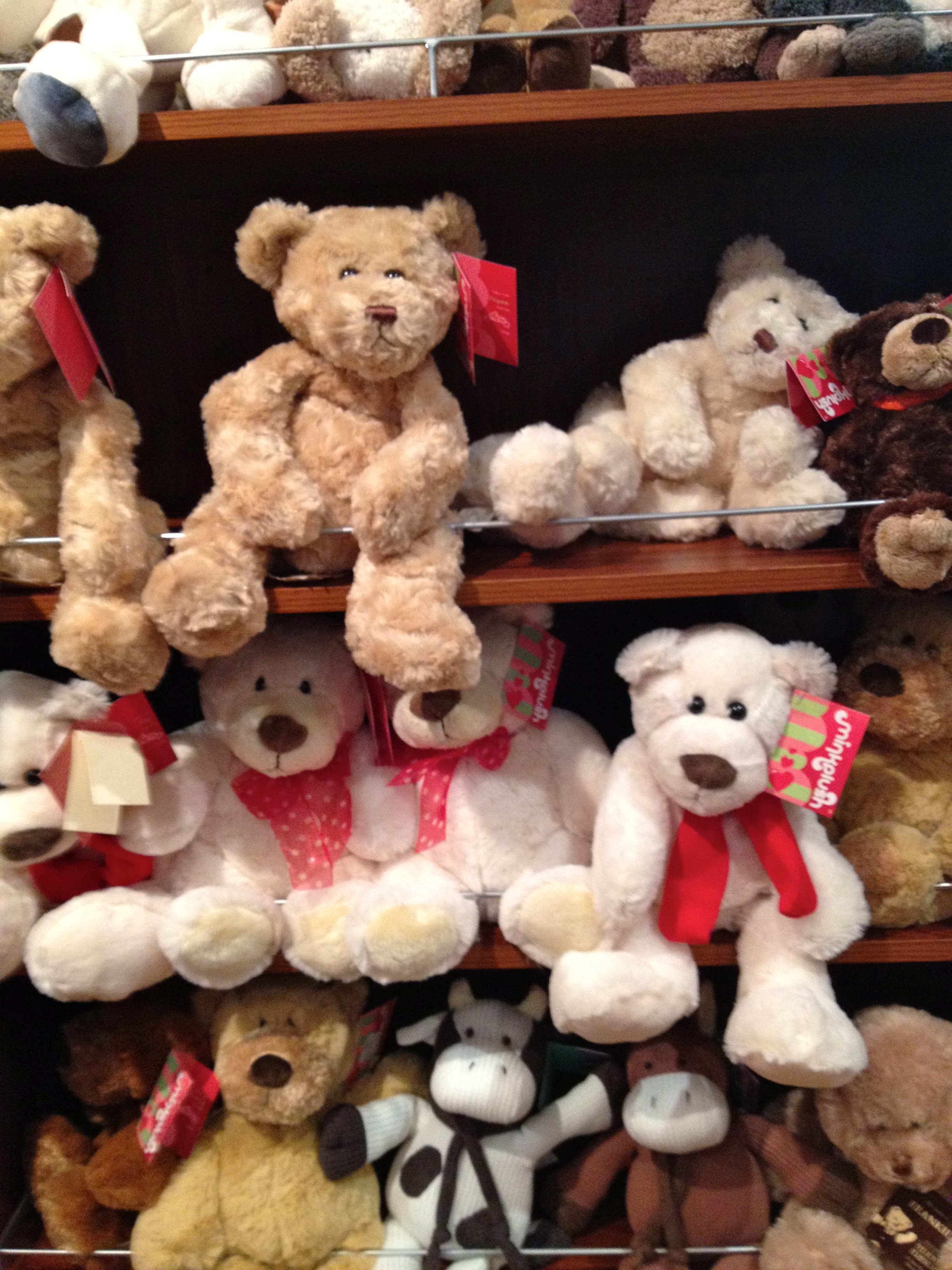 The teddy bear shop melbourne - Tedy shop ...