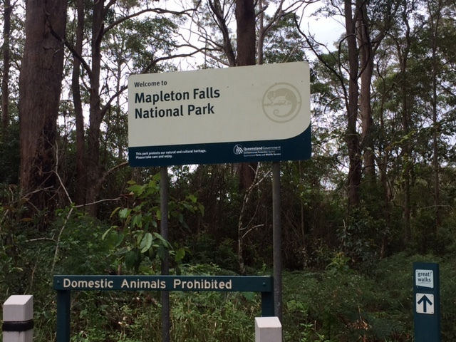 Temporary Closures of National Parks, Forests and Recreation Areas in QLD, 3 April 2020 closed, stop the spread of Coronavirus, camping closed, visitor centres closed, high use picnic, day use areas, toilet and shower facilities, lookouts, swimming holes, mountain bike, walking tracks and trails, four-wheel drive beach areas, Beerburrum East State Forest, Coochin Creek, Beerwah State Forest, Glass House Mountains Lookout, Bribie Island Recreation Area, Cooloola Recreation Area, Teewah Beach, Double Island Point, Crows Nest National Park, Danbulla National Park, Tinaroo, Kondalilla National Park, Main Range National Park, Mapleton Falls National Park, Mount Coolum National Park, Noosa National Park, Springbrook National Park, Tamborine National Park, monitored, penalties for non-compliance