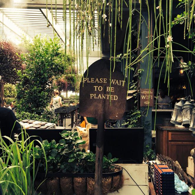 The Potting Shed, the grounds of alexandria, cafe, restaurant, please wait to be planted, rustic, restaurant, dine, drink, culinary, sydney