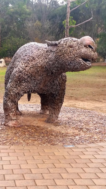 A reconstruction of Diprotodon, a giant wombat like creature.