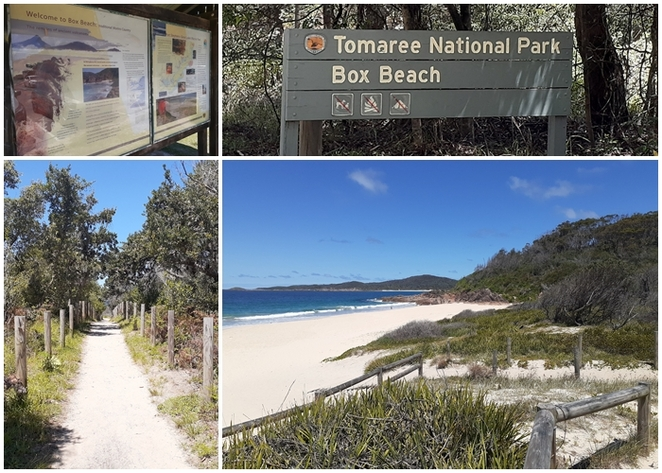 box beach, tomaree national park, NSW, port stephens, rock fishing, surfing, fishing, national park, walks, beaches, bays, wreck beach, zenith beach, tomaree heads walk, summit, beaches in NSW, australia, history, volcanic,