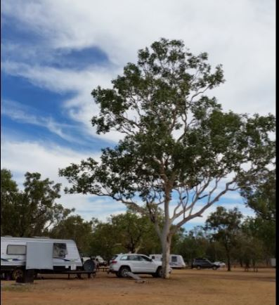 camping ground, Douglas River, Douglas River camping ground, NT