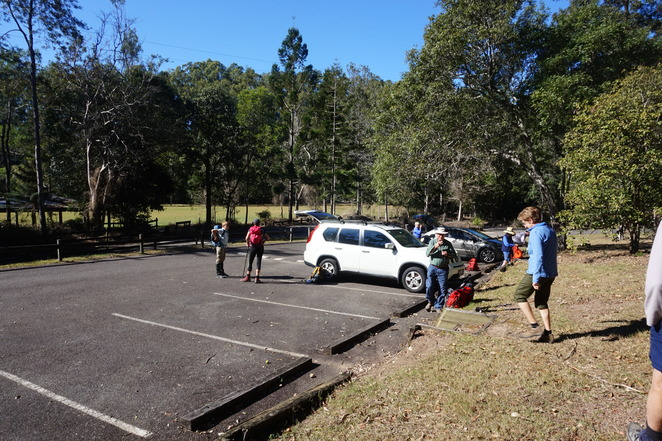 Carpark BellBird Grove