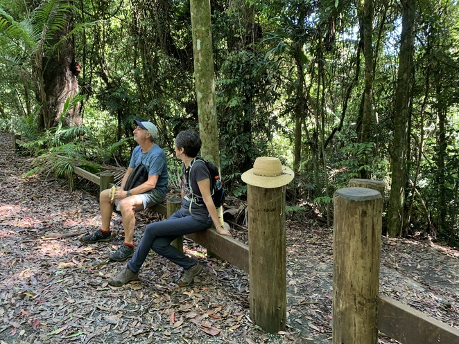 Greenes Falls Track, Maiala day use area, picnic, bbq's, D'Aguilar National Park, Cypress Grove Circuit,