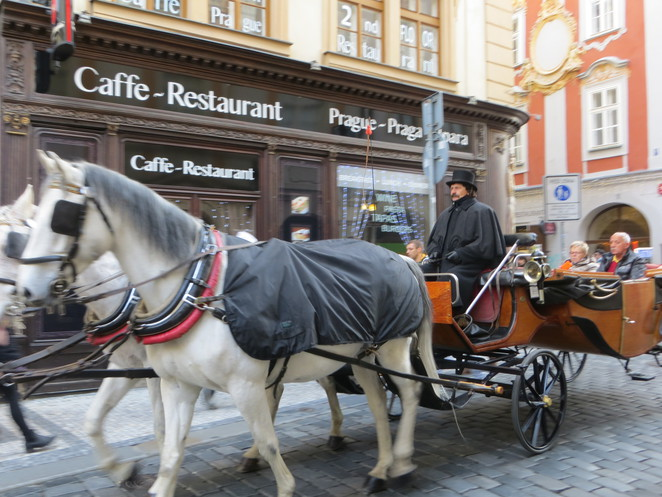 horse, carriage, prague