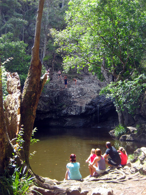 Kondalilla swimming hole