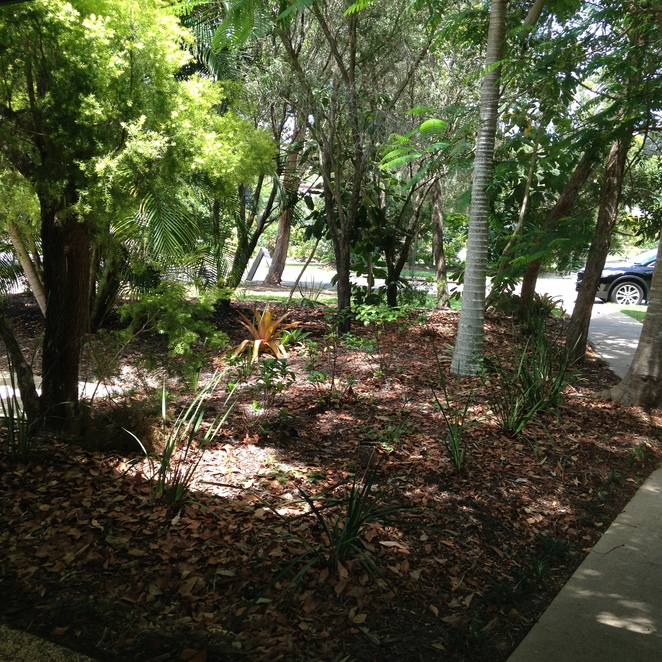 Meals, Shopping, Gifts, Things to Do, Gardens, Hervey Bay