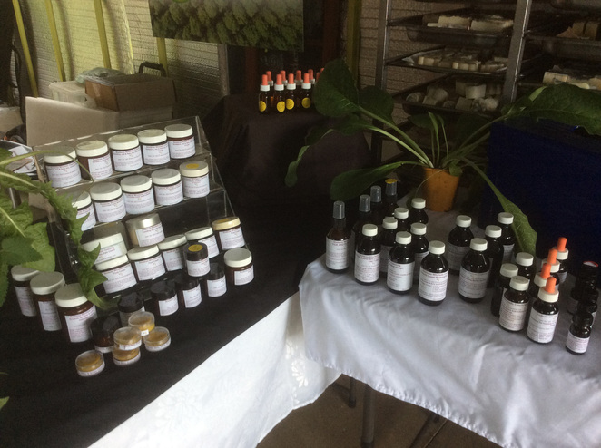 Shopping, Free, Organic, Farming, Learn Something, Near Gympie, Family Attractions, Festivals