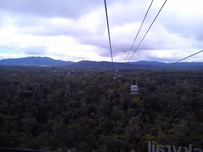 skyrail rainforest cableway, rainforest gondolas, things to do in cairns, how to get to kuranda