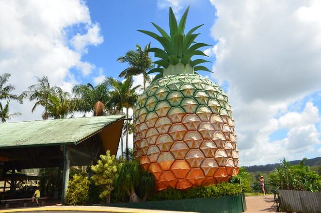 Photo of the Big Pineapply courtesy of Alpha @ Flickr