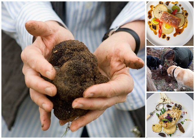 canberra truffle festival, canberra, ACT, events, foodie events, 2017, festivals,