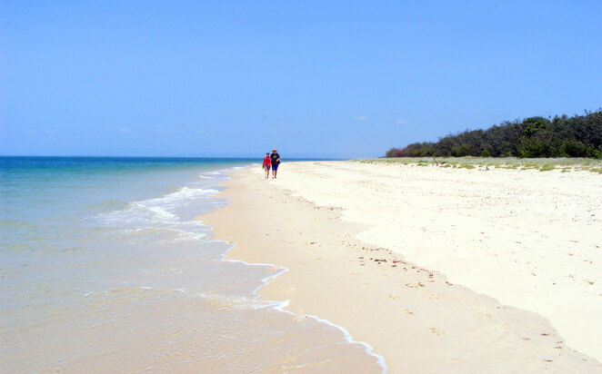 Long walks on lonely beaches are a great way to spend a pandemic